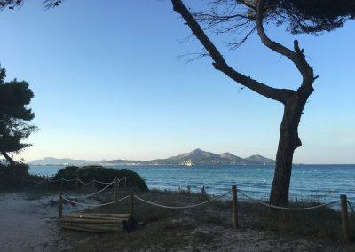 Mallorca - Playa de Muro mit Blick auf Port d'Alcudia