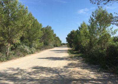 Port-d-Alcudia-auf-dem-Weg-zu-Europcar - Mallorca