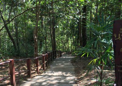 Chiang Mai - Doi Inthanon - Weg zum Sirithan-Wasserfall