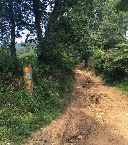 Camino del Norte - Irun nach San Sebastian - Teilweise ist der Weg sehr schlammig (es hatte allerdings am Vortag geregnet)