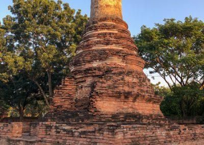 Ayutthaya Wat Phutthai Sawan - Chedi im Garten