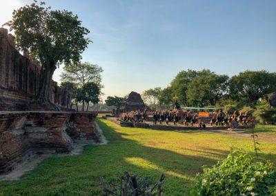 Ayutthaya Wat Thammikarat - Gartenanlage