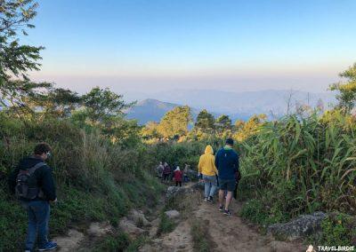 Phu Chi Fa - Abstieg vom Berg, 7:15 Uhr
