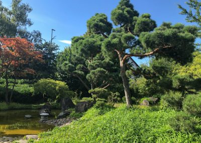 Bietigheim-Bissingen - Japangarten