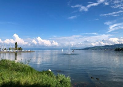 Blick auf den See in Arbon