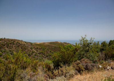 Fahrt durch Berge nach Ronda, Andalusien