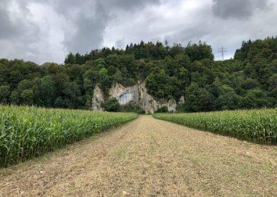 Kurz hinter Veringendorf