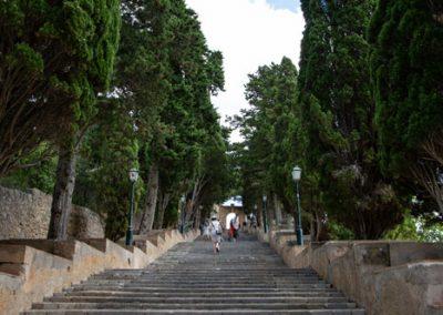 Arta - der Weg zum Santuari de Sant Salvador