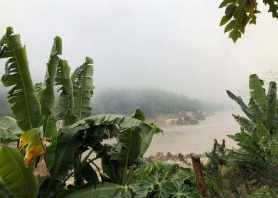 Der Mekong morgens im Nebel